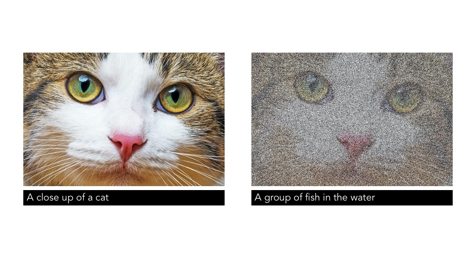 Microsoft PowerPoint Office Assistant Alt-Text automaticallly generated descriptors for Image 1: A close up of a cat. Image 2: A group of fish in the water (Image 1 with 500% monochromatic noise added)